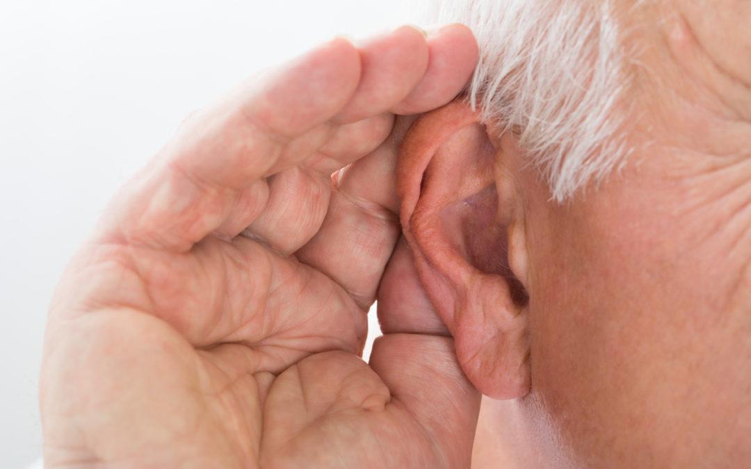 Multitalent Ohr – ein faszinierendes Organ